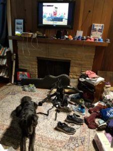 Dog lying down on carpet with TV showing video game in the background.
