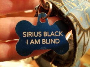 Dog tag reading Sirius Black. I am blind.